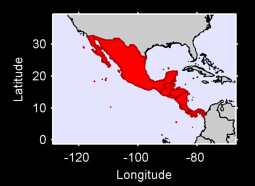 Central America Local Context Map